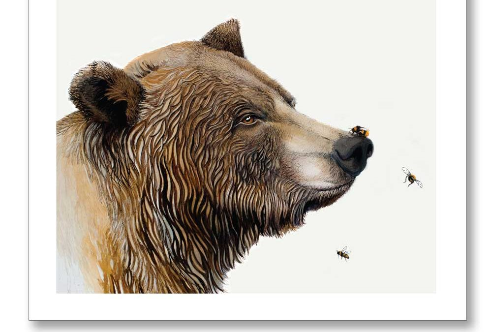Bear & the Bees by Sue Pyper